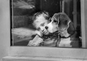 sad kid with dog